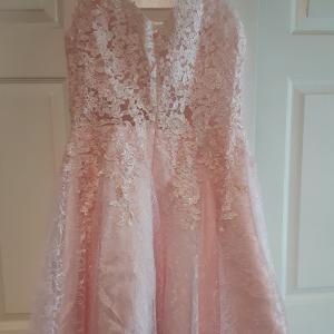 Photo of Lace party dress Pearl pink sz 12