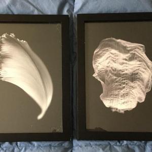 Photo of JOHN MCKINNON Pair of Limited Prints 8x12