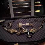 Compound bow & case with Toxonics sight