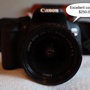 Photo of Canon