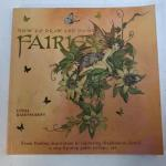 How To Draw and Paint Fairies Step by Step Book