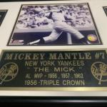 Mickey Mantle #7 36x16 frame register.