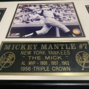 Photo of Mickey Mantle #7 36x16 frame register.