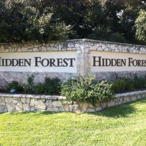 Photo of Hidden Forest Neighborhood Garage Sale