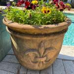 Lot #66 -- Terra Cotta Fleur de Lis pot with red pansies
