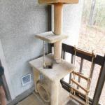 Cat Tower Playground 61""