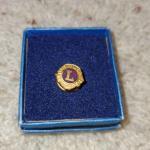 Vintage Lions Pin