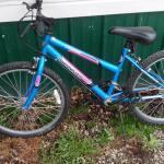 "24"" Girls Bike 1-309-269-1775. $20.00"