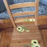 4 hand painted chairs