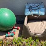 Lot 176G. Dog bed and carrier; exercise equipment--$35