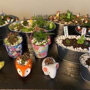 Photo of Plant Sale Fundraiser
