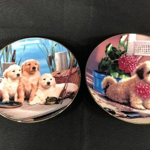 Photo of Puppy Dog Collector Plates