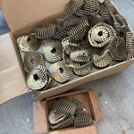 Box+ of Roofing Nails