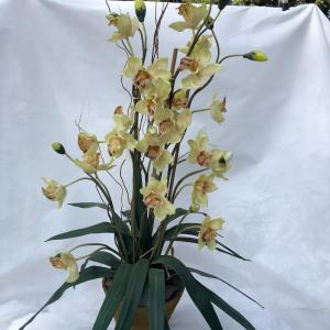 Photo of Artificial Orchid Plant
