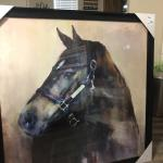 Beautiful 39'X39  Horse picture