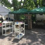 Saline MOVING / Tent Sale: Sun. June  13.   1pm -4 pm