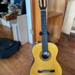 Alvarez Model PC50 6 String Accoustic Guitar plus Stand