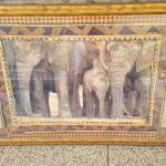 Elelphants