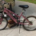 #153 Roadmaster Childs Mountain Bike