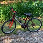 Roadmaster Ultra Terrain Women's Bicycle