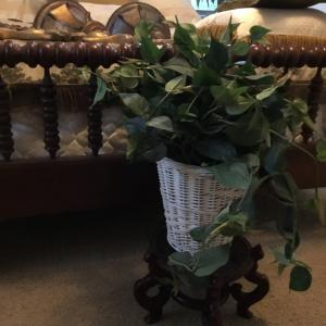 Photo of Silk Real Looking Plant in White Basket