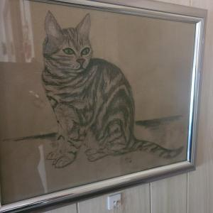 Photo of Drawing of Cat