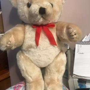 Photo of New poseable bear