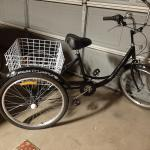 New Adult Tricycle