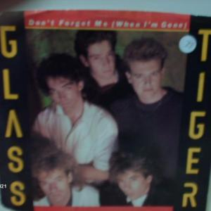 Photo of Glass Tiger