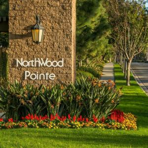 Photo of FANTASTIC 5 TRACT SALE IN NORTHWOOD POINTE!
