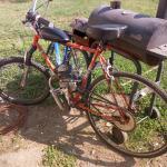 29-in beach cruiser motorized bicycle