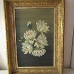 Framed 'White Flowers'- Unsigned