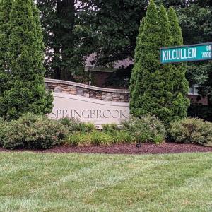 Photo of Springbrook Neighborhood Yard Sale
