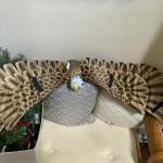 Cloth eagle wings