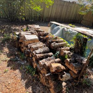 Photo of Wood  For Sale