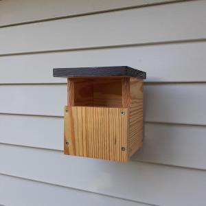 Photo of Cedar Wood NC Wren Birdhouses