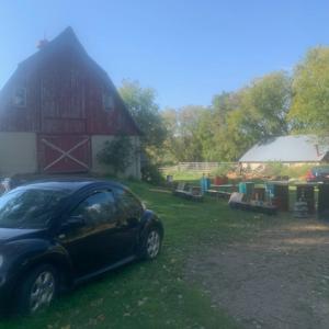 Photo of Lucky 7 Barn Sale