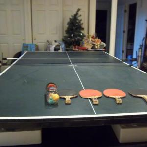 Photo of PING PONG TABLE REGULATION SIZE