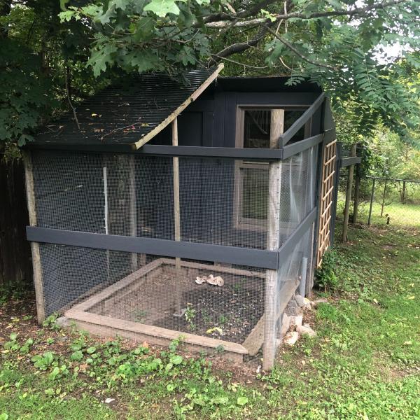 Photo of Chicken Coop