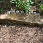 """Outdoor"" Set of 7 Mason Jars *See Details"