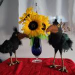 Hand crafted crows