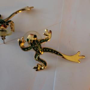 Photo of Earrings. Frog
