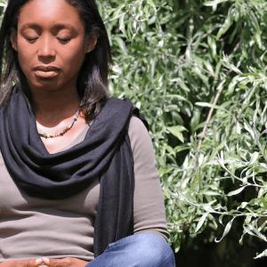 Photo of How to Meditate: A Public Talk