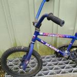 Lot 448: Kids Training Bike