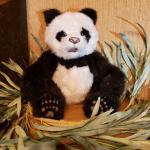 Vintage Fur Real Full Size Panda Bear Lov Cub is an Animatronic Interactive Toy